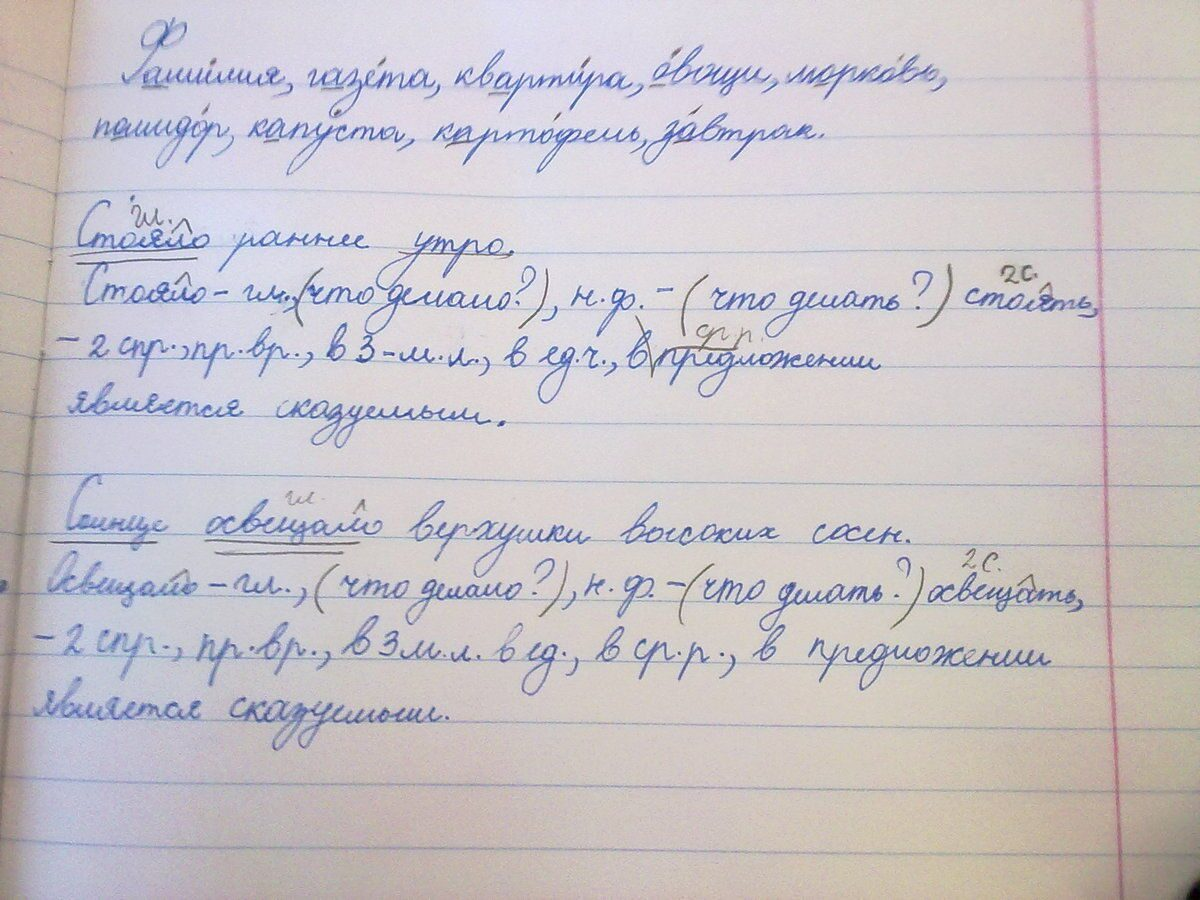 Синтаксический разбор предложения 7 класс образец калужская.